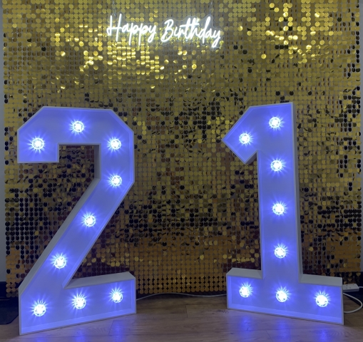 Sequin Shimmer Wall Hire