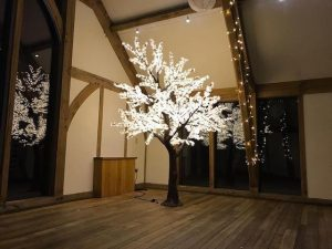 LED Trees Hire